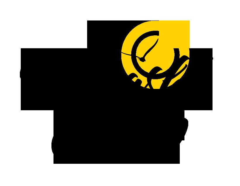 Read more about the article Informacje organizacyjne dot. letnich obozów 2021