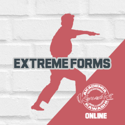 Extreme Forms (kurs form bez broni)